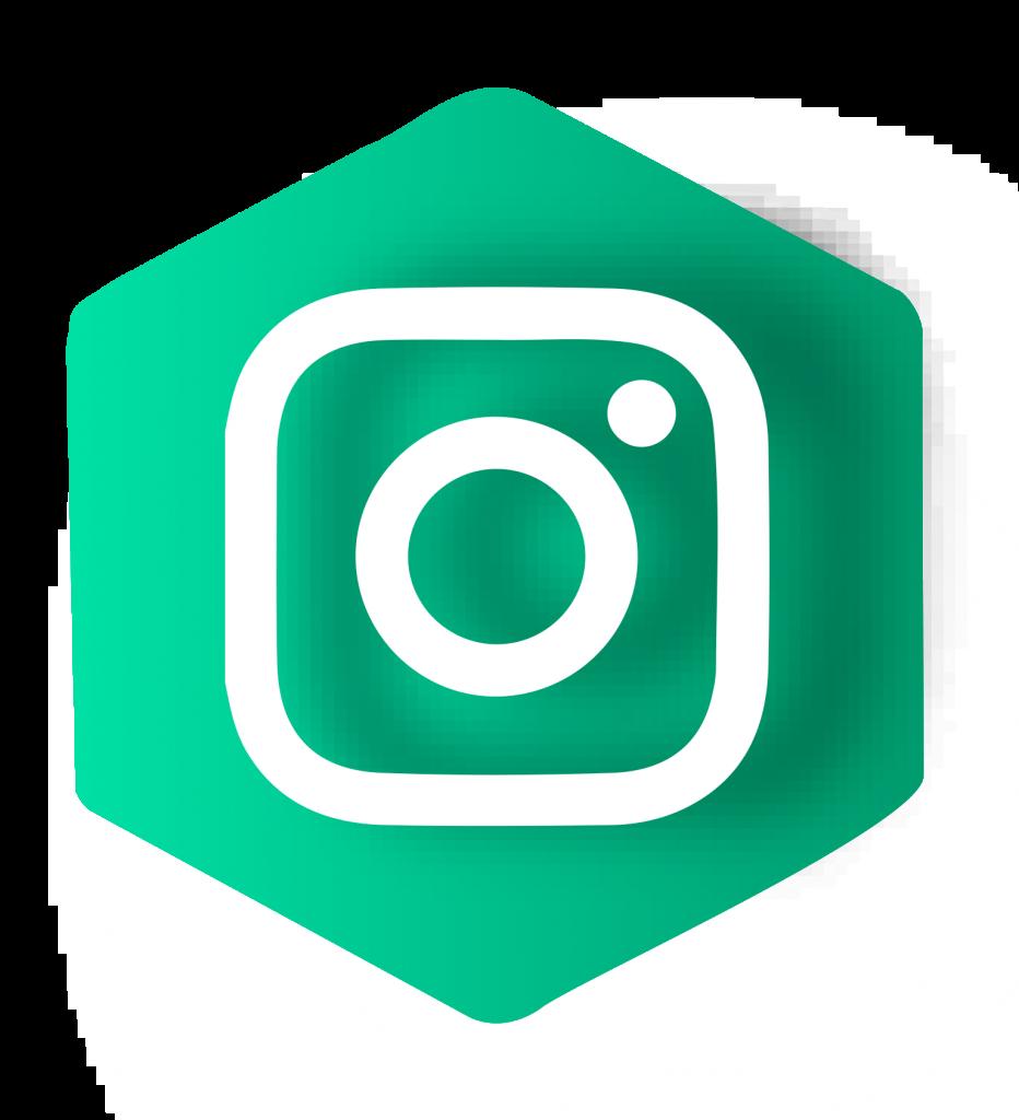 picto-instagram-vert